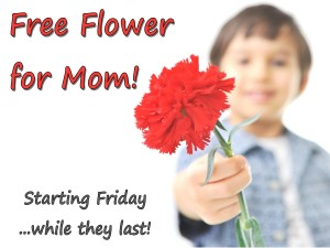 Love on Mom with 20% Off jewelry! Free flower for mom this weekend!