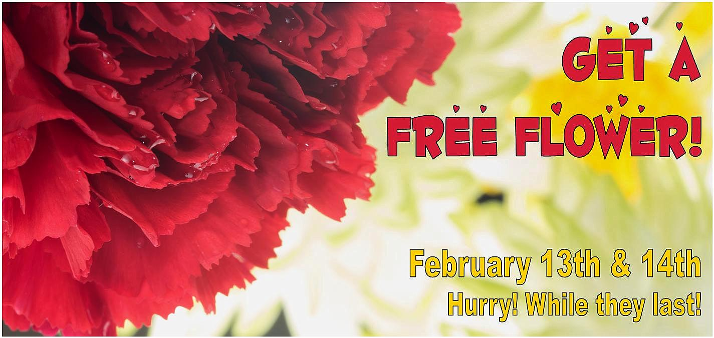 Get a Sweet Treat this Valentines Day with an extra 20% off AND a Free Flower!