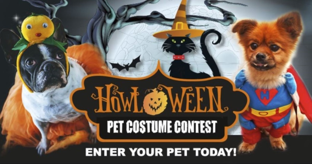 Facebook Costume Contest: Enter Your Pet for a Chance to Win!